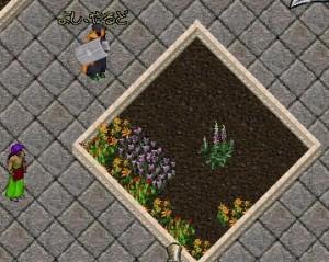 壊滅状態の花壇を再び満開にせんと意気込む、営業部長兼製本係長